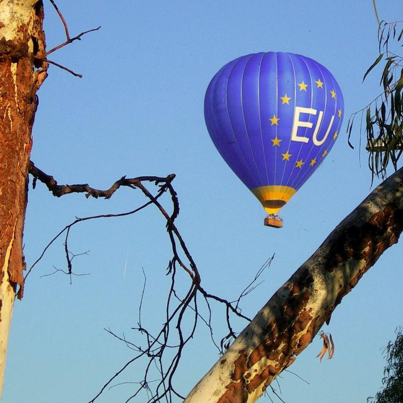 /content/dam/rmit/rmit-images/college-of-dsc-images/eu-centre/EU-Balloon-in-Canberra-Pic.jpg