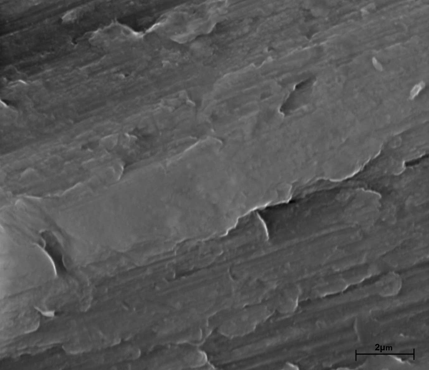 Figure 2: Scanning electron microscope image of as received alloy surface of AA6022.