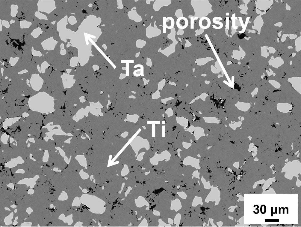 Figure 2. Microstructure of Cold Sprayed Ti-30%Ta coating