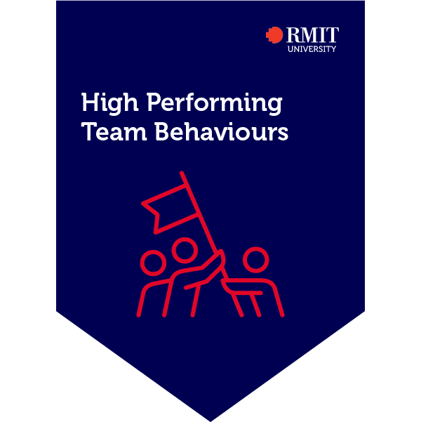 High Performing Team Behaviours