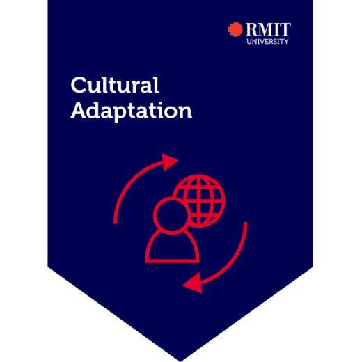 Cultural Adaptation