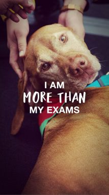 'I am more than my exams' wallpaper